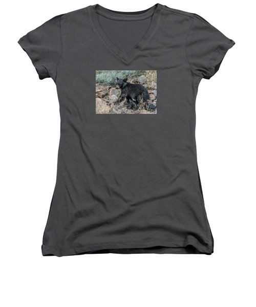 Bear Cub Walking Women's V-Neck T-Shirt (Junior Cut) by Stephen  Johnson
