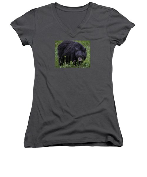 Bear Gaze Women's V-Neck T-Shirt (Junior Cut) by Elizabeth Eldridge