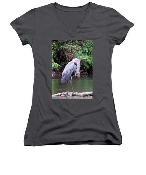Bearded Blue Heron Women's V-Neck (Athletic Fit)