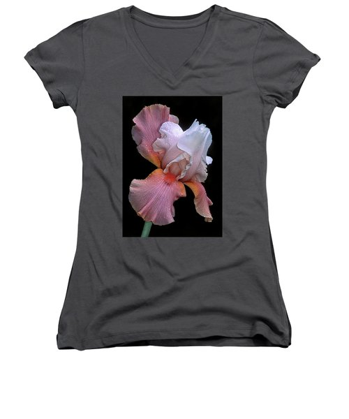 Bearded Iris Women's V-Neck T-Shirt (Junior Cut) by Dave Mills