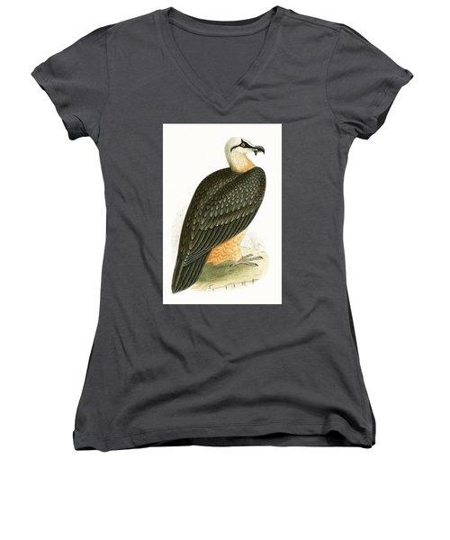 Bearded Vulture Women's V-Neck T-Shirt (Junior Cut)