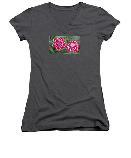 Beauties In My Garden Women's V-Neck T-Shirt (Junior Cut) by Jeanette Oberholtzer