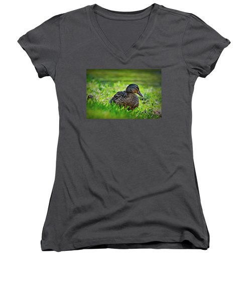 Women's V-Neck T-Shirt (Junior Cut) featuring the photograph Beautiful Mama Duck by Linda Unger