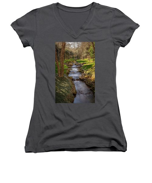 Beautiful Stream Women's V-Neck (Athletic Fit)
