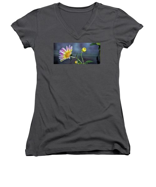 Beauty And The Beasts Women's V-Neck