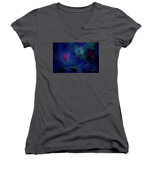 Beauty And The Mist Women's V-Neck T-Shirt