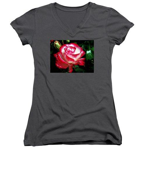 Beauty Rose Women's V-Neck T-Shirt (Junior Cut) by Joseph Frank Baraba