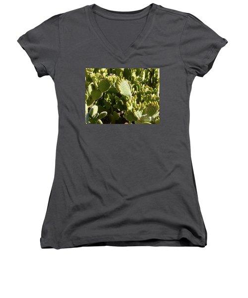 Beaver Tail Cactus, Cave Creek, Arizona Women's V-Neck T-Shirt (Junior Cut)