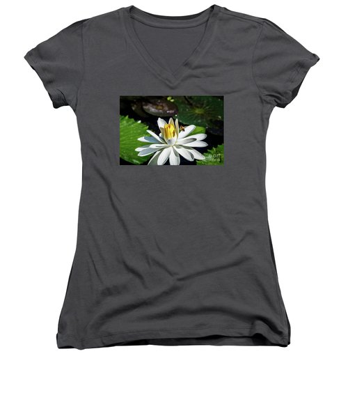 Bee In A Flower Women's V-Neck (Athletic Fit)
