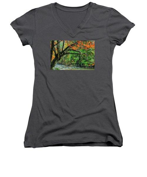 Beech Tree And Swinging Bridge Women's V-Neck