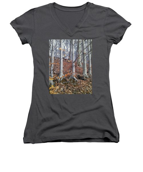 Beech Trees Women's V-Neck