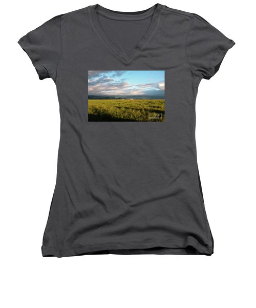 Before The Rainbow Women's V-Neck T-Shirt
