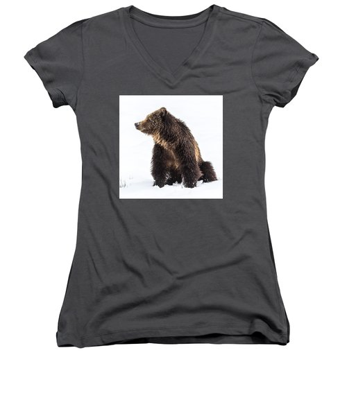 Women's V-Neck T-Shirt (Junior Cut) featuring the photograph Beryl Springs Grizzly Sow In Snow by Yeates Photography