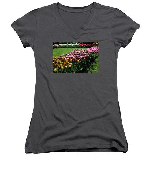 Multicolor Tulips Women's V-Neck T-Shirt (Junior Cut) by Ana Mireles
