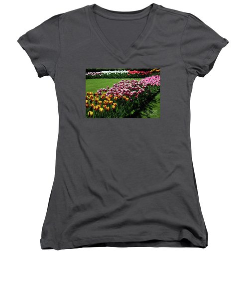 Multicolor Tulips Women's V-Neck T-Shirt