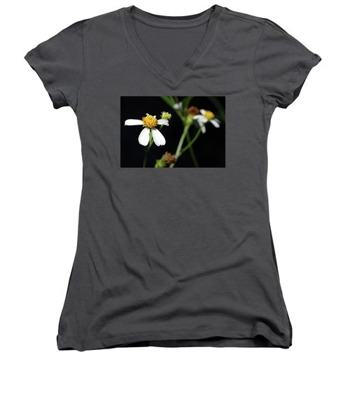 Women's V-Neck T-Shirt (Junior Cut) featuring the photograph Bidens Alba by Richard Rizzo