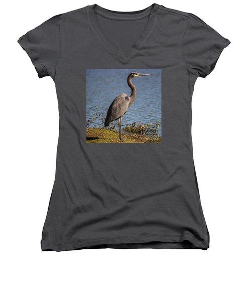 Big Bird Women's V-Neck T-Shirt