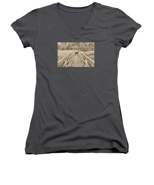 Women's V-Neck T-Shirt (Junior Cut) featuring the photograph Big Dog by Margaret Palmer