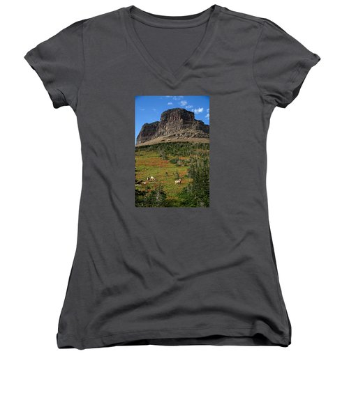 Big Horn Sheep Women's V-Neck T-Shirt (Junior Cut) by Lawrence Boothby
