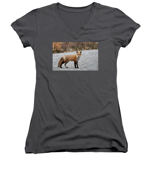 Women's V-Neck T-Shirt (Junior Cut) featuring the photograph Big Red by Tamera James