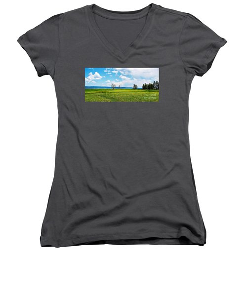 Big Summit Prairie In Bloom Women's V-Neck T-Shirt (Junior Cut) by Michele Penner