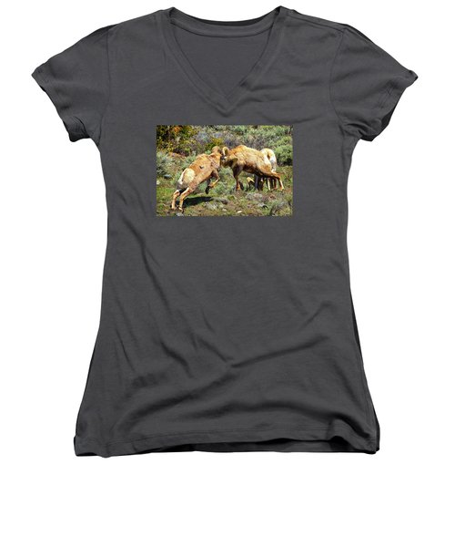 Bighorn Contact Women's V-Neck