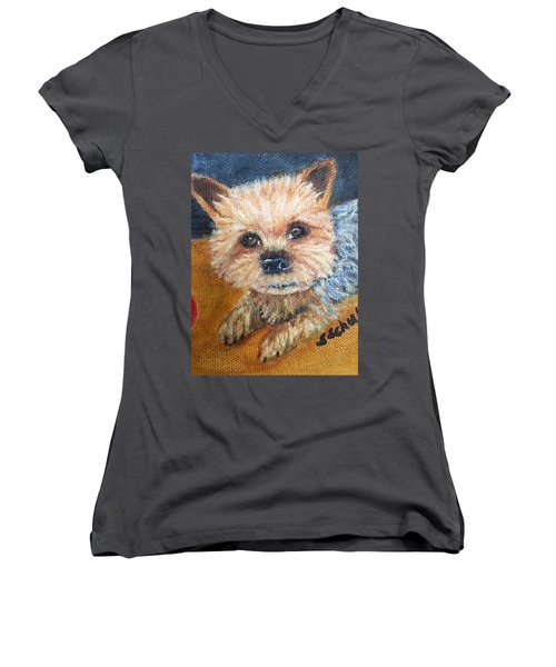 Billy Women's V-Neck T-Shirt (Junior Cut) by Sharon Schultz