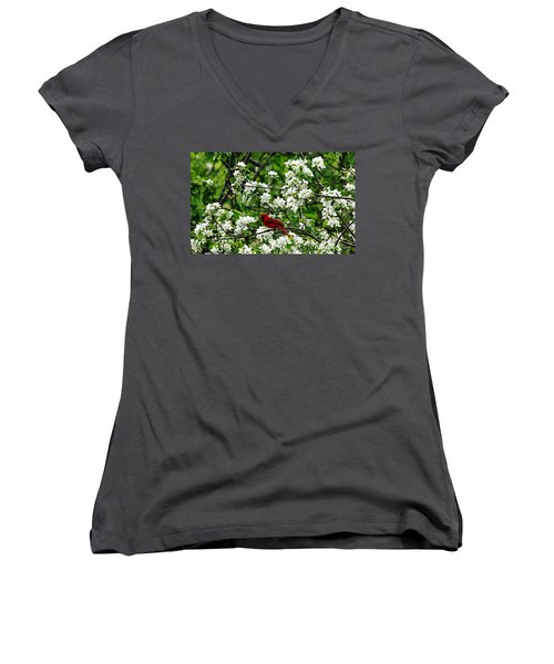 Bird And Blossoms Women's V-Neck (Athletic Fit)