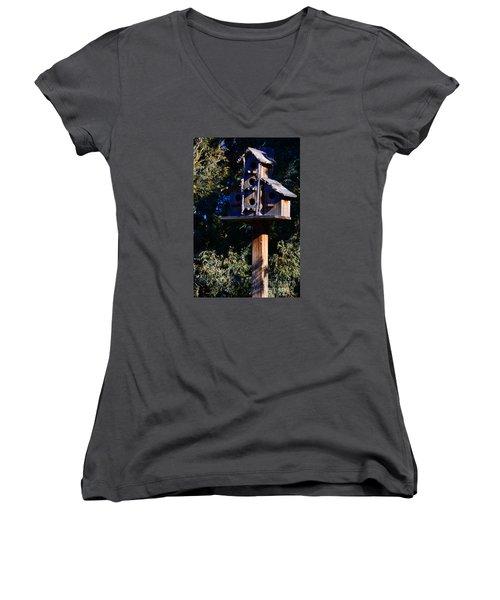 Bird Condos Women's V-Neck T-Shirt (Junior Cut) by Robert WK Clark