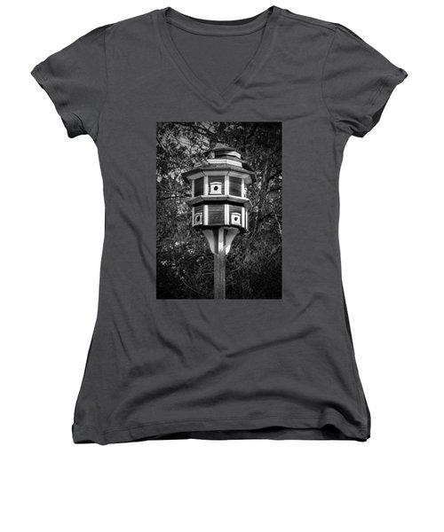 Bird House Women's V-Neck T-Shirt (Junior Cut) by Jason Moynihan
