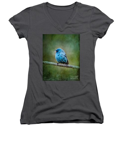 Bird In Blue Indigo Bunting Ginkelmier Inspired Women's V-Neck