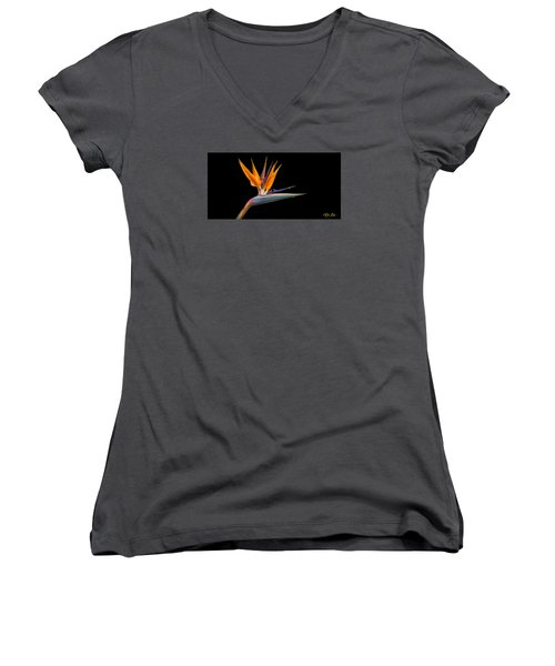 Bird Of Paradise Flower On Black Women's V-Neck