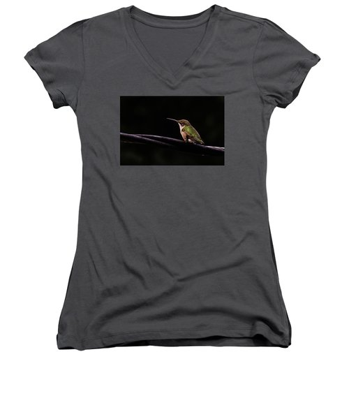 Bird On A Wire Women's V-Neck (Athletic Fit)