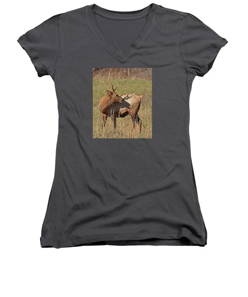 Bird On My Back Women's V-Neck T-Shirt (Junior Cut) by Alan Lenk