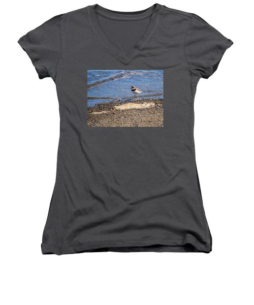 Women's V-Neck T-Shirt (Junior Cut) featuring the photograph Birds Of Maine by Trace Kittrell