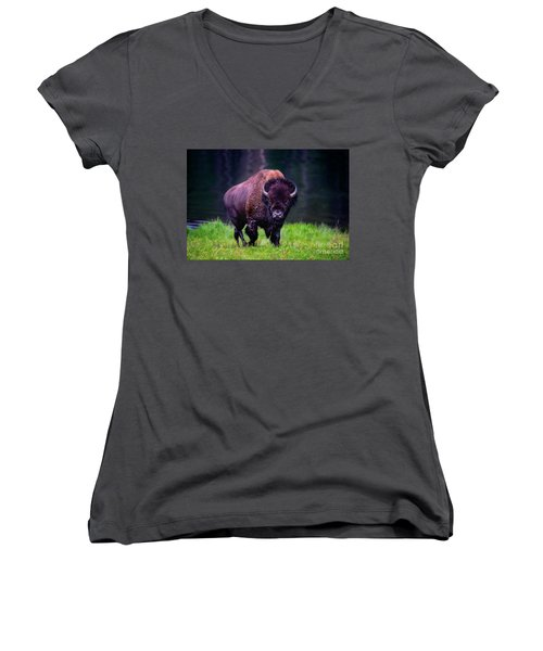 Bison Of Yellowstone Women's V-Neck T-Shirt (Junior Cut) by Jim  Hatch