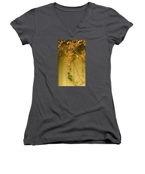 Bittersweet Vine Women's V-Neck T-Shirt (Junior Cut) by Tom Singleton