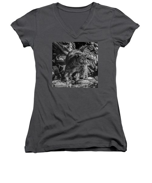 Women's V-Neck featuring the photograph Black Bear Creekside by Roxy Hurtubise