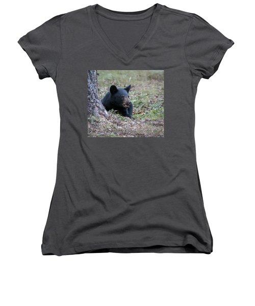 Black Bear Resting Women's V-Neck T-Shirt (Junior Cut) by Tyson and Kathy Smith