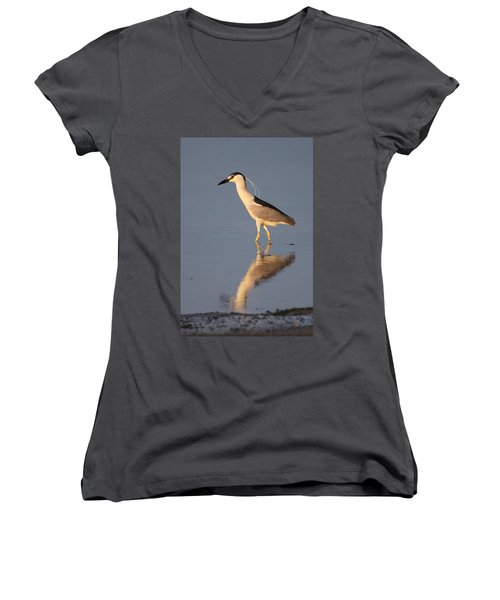 Black Crowned Night Heron Kings Park New York Women's V-Neck T-Shirt (Junior Cut) by Bob Savage