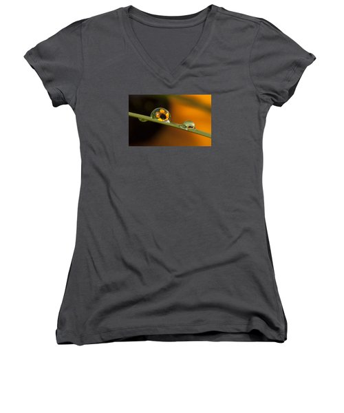 Black-eyed Susan In Dew Women's V-Neck T-Shirt
