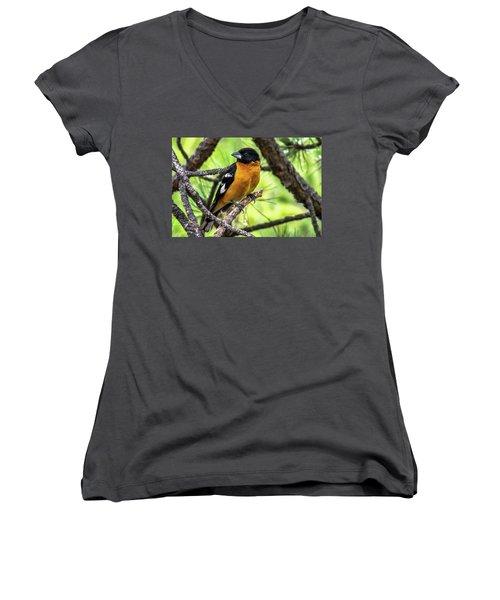 Black-headed Grosbeak Women's V-Neck T-Shirt (Junior Cut) by Marilyn Burton