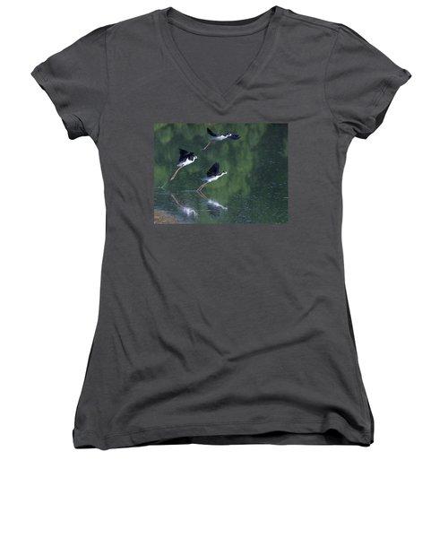 Black-necked Stilts 4302-080917-2cr Women's V-Neck T-Shirt