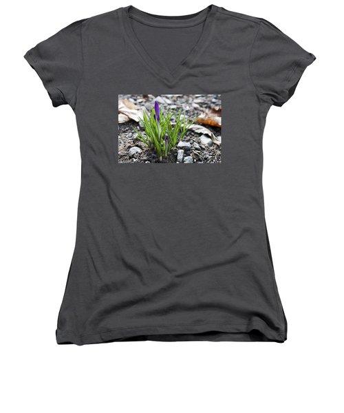 Bloom Awaits Women's V-Neck T-Shirt