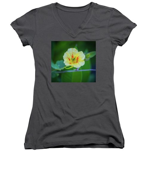 Bloom Women's V-Neck T-Shirt