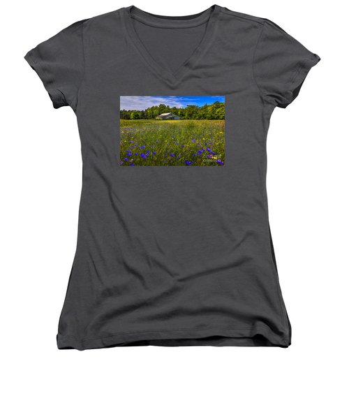 Blooming Country Meadow Women's V-Neck T-Shirt (Junior Cut) by Marvin Spates