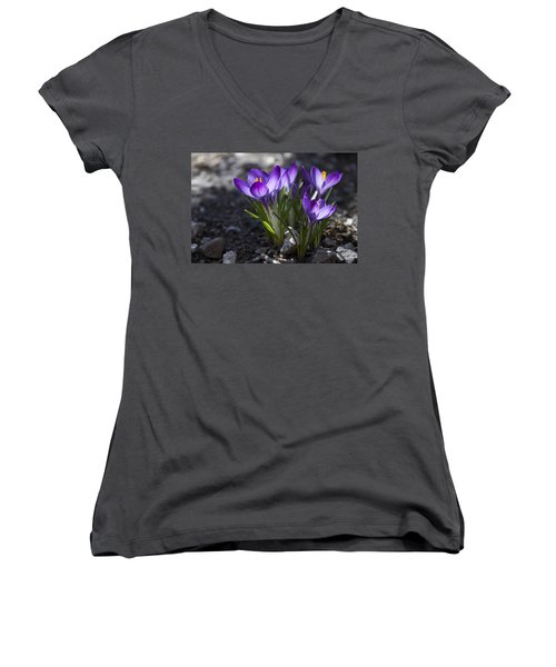 Women's V-Neck T-Shirt (Junior Cut) featuring the photograph Blooming Crocus #2 by Jeff Severson