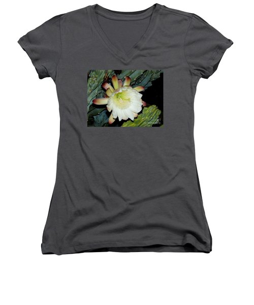 Blooming Night Cereus Women's V-Neck T-Shirt