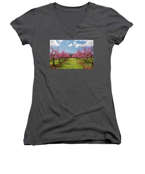 Blooming Peach Orchard 1 Women's V-Neck