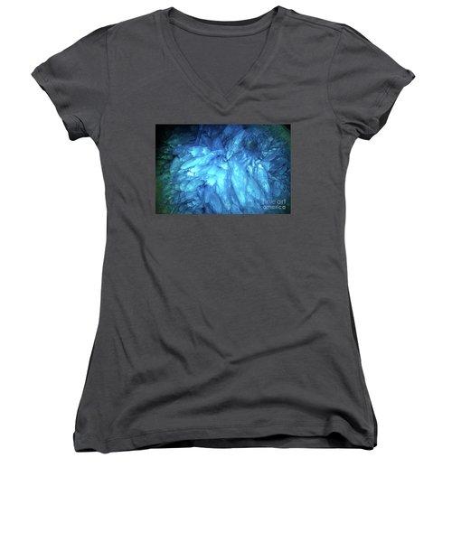 Blue Agate Women's V-Neck T-Shirt (Junior Cut) by Nicholas Burningham